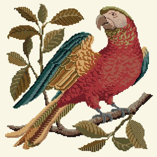 Alister the Parrot Needlepoint Kit Elizabeth Bradley Design Winter White