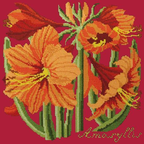 Amaryllis Needlepoint Kit Elizabeth Bradley Design Bright Red
