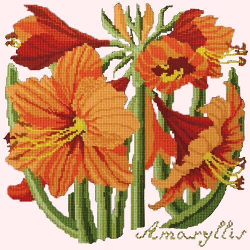 Amaryllis Needlepoint Kit Elizabeth Bradley Design Cream