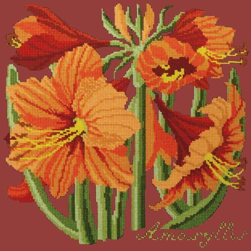 Amaryllis Needlepoint Kit Elizabeth Bradley Design Dark Red