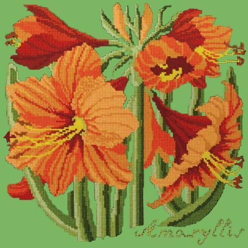 Amaryllis Needlepoint Kit Elizabeth Bradley Design Grass Green