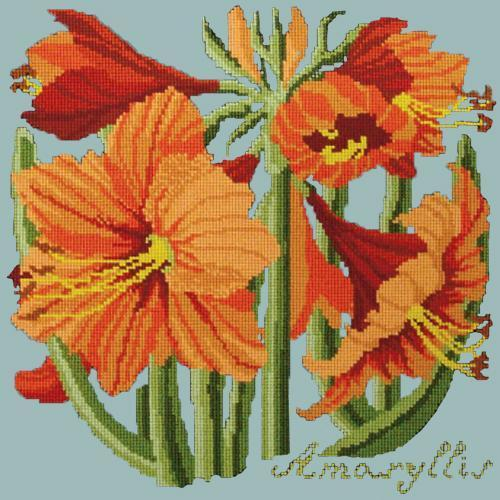 Amaryllis Needlepoint Kit Elizabeth Bradley Design Pale Blue