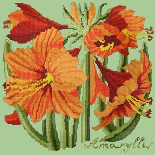 Amaryllis Needlepoint Kit Elizabeth Bradley Design Pale Green
