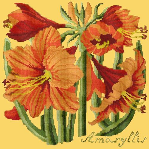 Amaryllis Needlepoint Kit Elizabeth Bradley Design Yellow