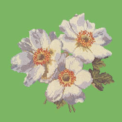 Anemones Needlepoint Kit Elizabeth Bradley Design Grass Green