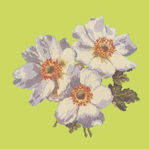 Anemones Needlepoint Kit Elizabeth Bradley Design Pale Lime