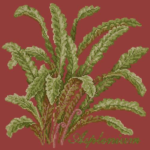 Asplenium Needlepoint Kit Elizabeth Bradley Design Dark Red