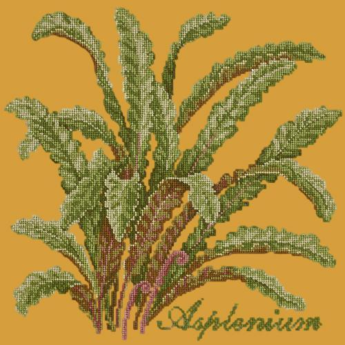 Asplenium Needlepoint Kit Elizabeth Bradley Design Yellow