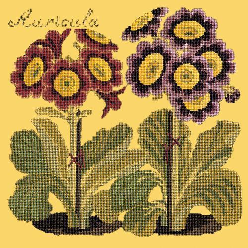 Auricula Needlepoint Kit Elizabeth Bradley Design Sunflower Yellow