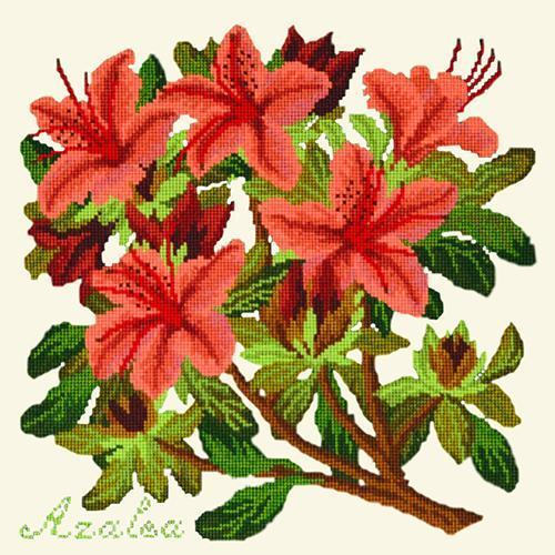 Azalea Needlepoint Kit Elizabeth Bradley Design Winter White