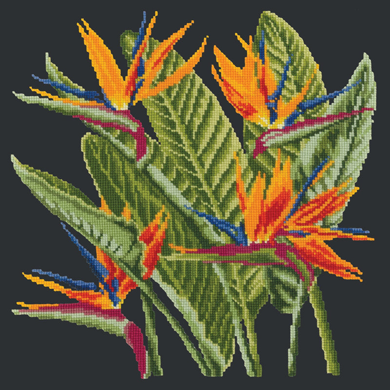 Bird of Paradise Needlepoint Kit Elizabeth Bradley Design Black