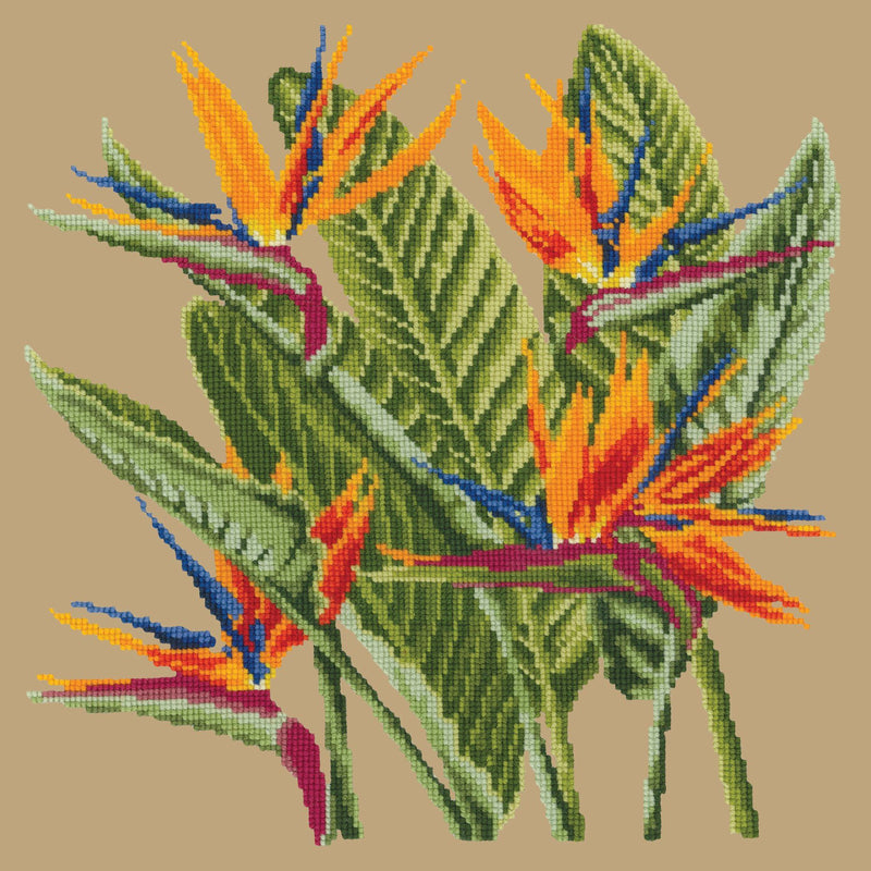Bird of Paradise Needlepoint Kit Elizabeth Bradley Design Sand