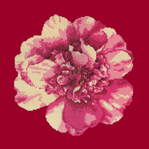 Camellia Blossom Needlepoint Kit Elizabeth Bradley Design Bright Red
