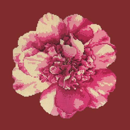 Camellia Blossom Needlepoint Kit Elizabeth Bradley Design Dark Red
