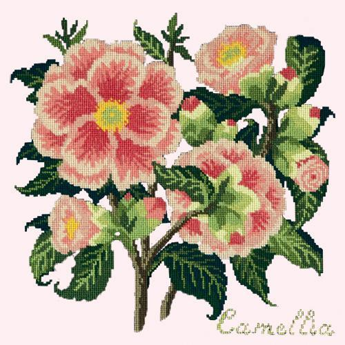 Camellia Needlepoint Kit Elizabeth Bradley Design Cream
