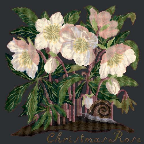 Christmas Rose Needlepoint Kit Elizabeth Bradley Design Black