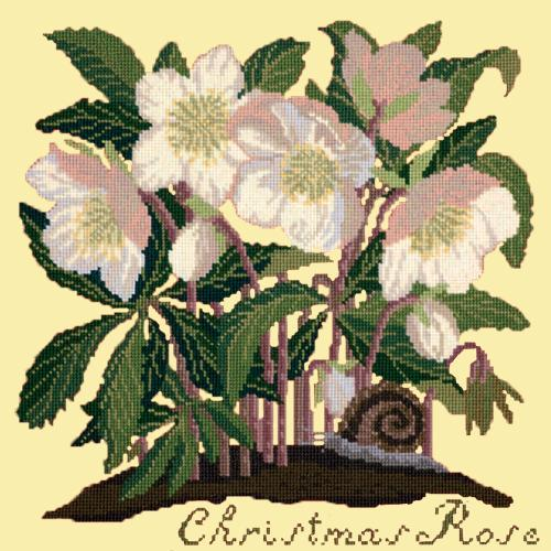 Christmas Rose Needlepoint Kit Elizabeth Bradley Design Butter Yellow