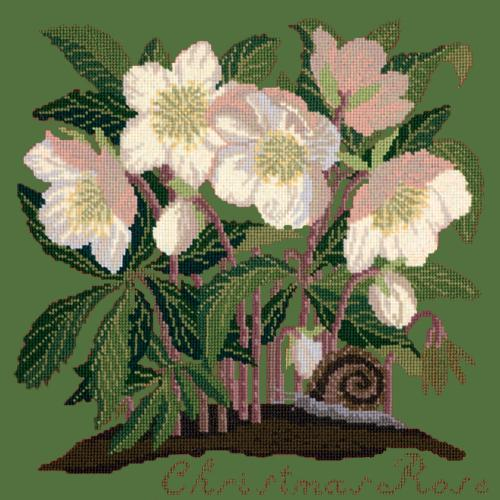 Christmas Rose Needlepoint Kit Elizabeth Bradley Design Dark Green