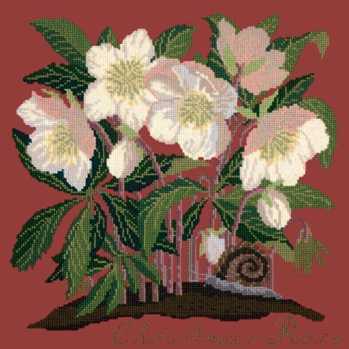 Christmas Rose Needlepoint Kit Elizabeth Bradley Design Dark Red