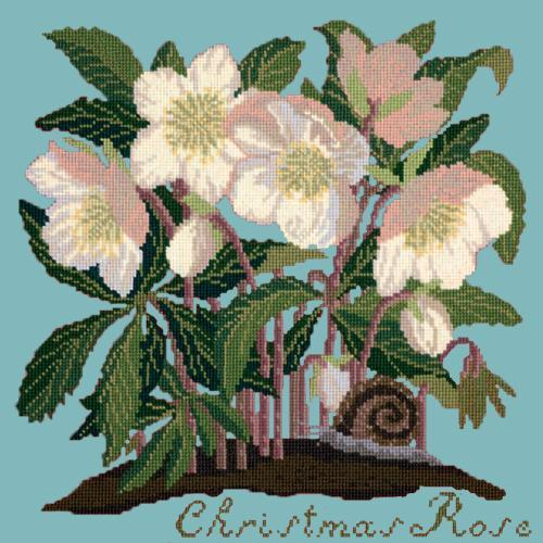 Christmas Rose Needlepoint Kit Elizabeth Bradley Design Duck Egg Blue