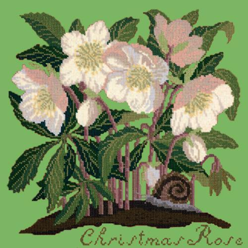 Christmas Rose Needlepoint Kit Elizabeth Bradley Design Grass Green