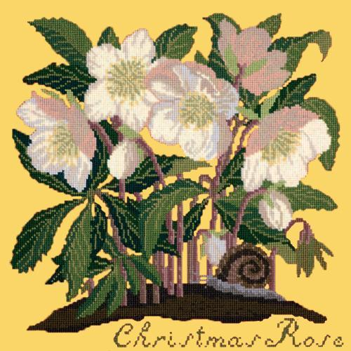Christmas Rose Needlepoint Kit Elizabeth Bradley Design Sunflower Yellow