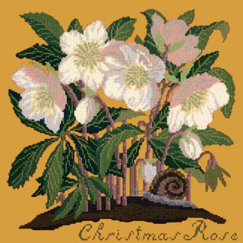 Christmas Rose Needlepoint Kit Elizabeth Bradley Design Yellow