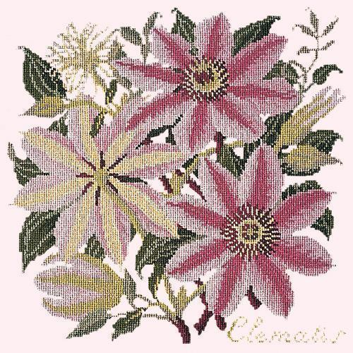 Clematis Needlepoint Kit Elizabeth Bradley Design Cream