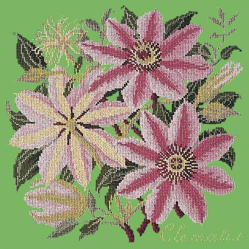 Clematis Needlepoint Kit Elizabeth Bradley Design Grass Green