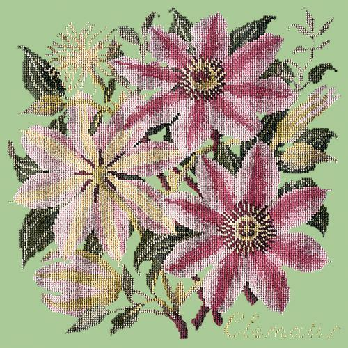 Clematis Needlepoint Kit Elizabeth Bradley Design Pale Green