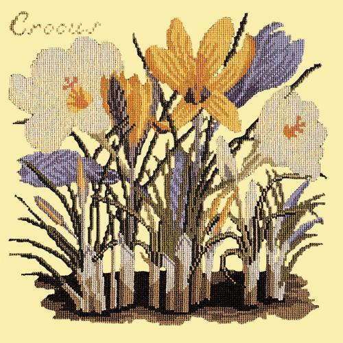 Crocus Needlepoint Kit Elizabeth Bradley Design Butter Yellow