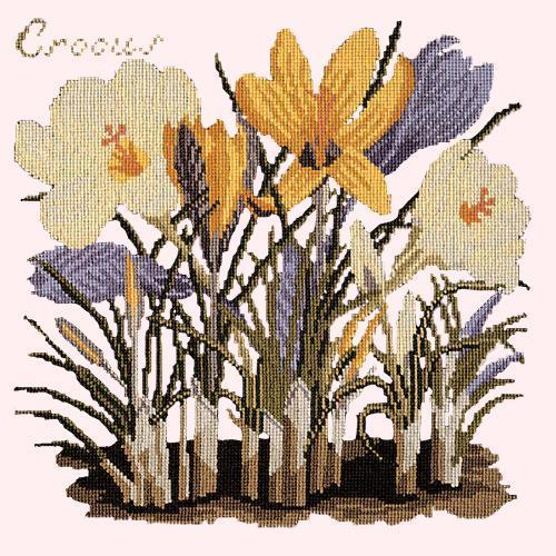 Crocus Needlepoint Kit Elizabeth Bradley Design Cream