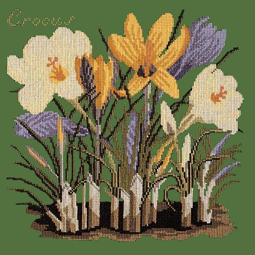 Crocus Needlepoint Kit Elizabeth Bradley Design Dark Green