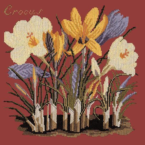 Crocus Needlepoint Kit Elizabeth Bradley Design Dark Red