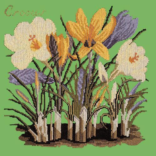 Crocus Needlepoint Kit Elizabeth Bradley Design Grass Green