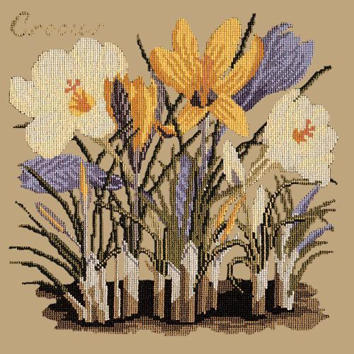 Crocus Needlepoint Kit Elizabeth Bradley Design Sand