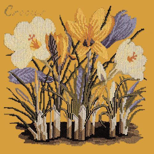 Crocus Needlepoint Kit Elizabeth Bradley Design Yellow