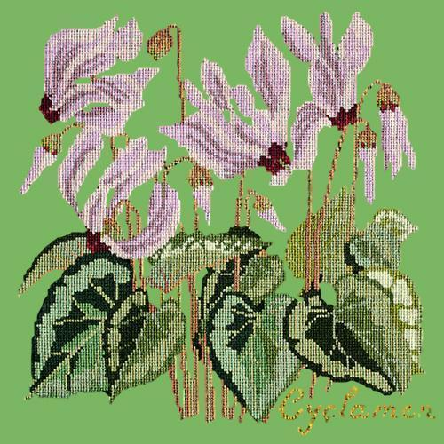 Cyclamen Needlepoint Kit Elizabeth Bradley Design Grass Green