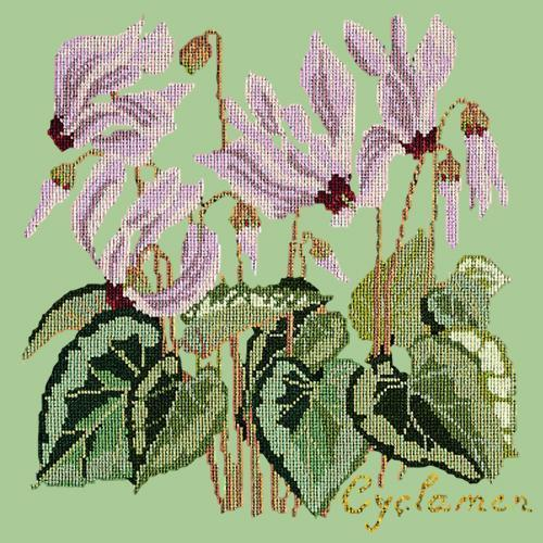 Cyclamen Needlepoint Kit Elizabeth Bradley Design Pale Green