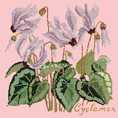 Cyclamen Needlepoint Kit Elizabeth Bradley Design Pale Rose