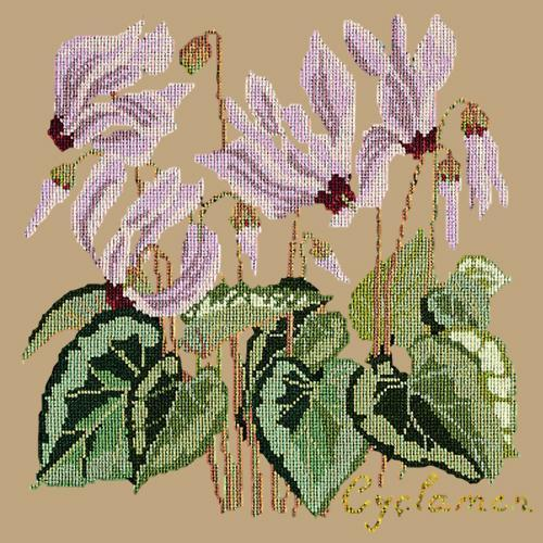 Cyclamen Needlepoint Kit Elizabeth Bradley Design Sand