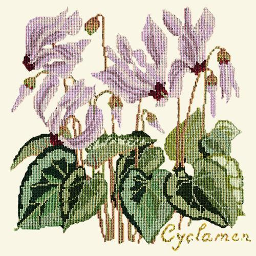 Cyclamen Needlepoint Kit Elizabeth Bradley Design Winter White