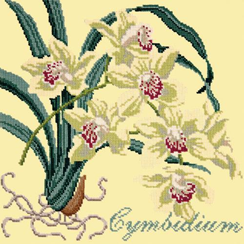 Cymbidium (Boat Orchid) Needlepoint Kit Elizabeth Bradley Design Butter Yellow