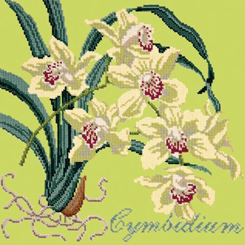 Cymbidium (Boat Orchid) Needlepoint Kit Elizabeth Bradley Design Pale Lime