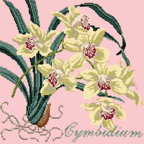Cymbidium (Boat Orchid) Needlepoint Kit Elizabeth Bradley Design Pale Rose
