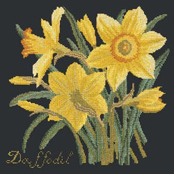 Daffodil Needlepoint Kit Elizabeth Bradley Design Black