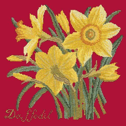 Daffodil Needlepoint Kit Elizabeth Bradley Design Bright Red