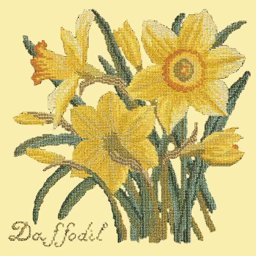 Daffodil Needlepoint Kit Elizabeth Bradley Design Butter Yellow