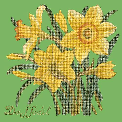 Daffodil Needlepoint Kit Elizabeth Bradley Design Grass Green