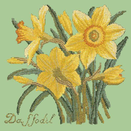 Daffodil Needlepoint Kit Elizabeth Bradley Design Pale Green